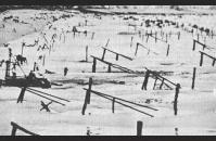 A-3) Ramps, hedgehogs, mine-tipped poles, and tetrahedrons on a Normandy beach. US Air Force